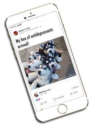 Facebook Ad Agency Lebanon